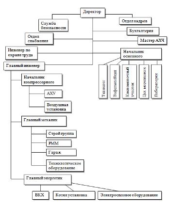1.3 Организационная структура